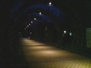 山下公園?